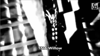 TNA Willow Custom Titantron Theme Song 2014