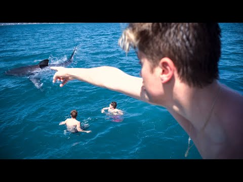 SHARK PRANK ON MY BEST-FRIENDS *Went Real*