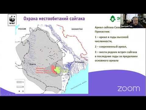 Вебинар «Об эковолонтерстве на заповедных территориях»