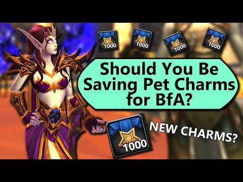 Should You Be Saving Pet Charms for BfA?