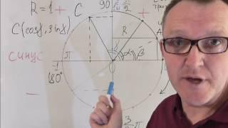 Еденичная окружность, тригонометрический круг, числовая окружность