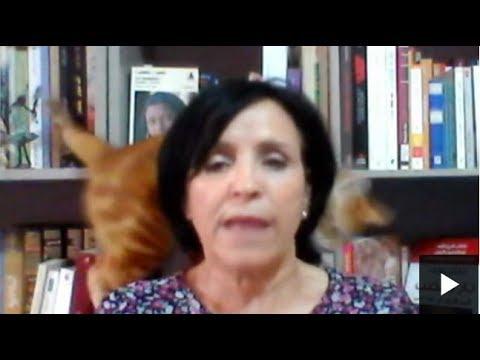 قطة سرقت الأضواء خلال مقابلة مع تلفزيون البي بي سي  - نشر قبل 2 ساعة
