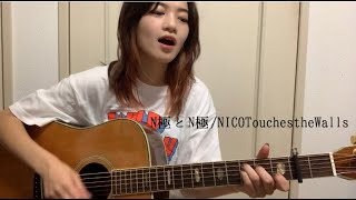 N極とN極/NICO Touches the Walls