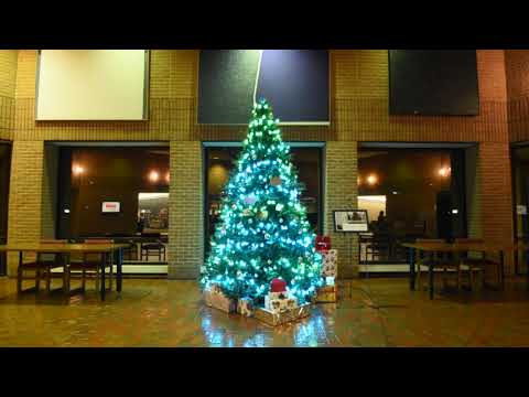 Southern State Community College Tree Project pt4