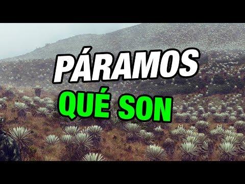 Qué es un Páramo? Páramos en Colombia