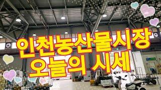 농산물시장 ~[농산물시세]
