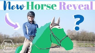 Meet My NEW HORSE - The Big Reveal! | This Esme