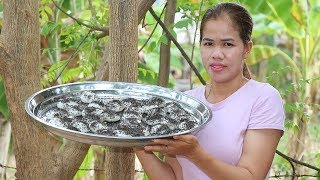 How To Cook Sticky Rice Cake | Sticky Rice Desert Recipes | Village Food Factory