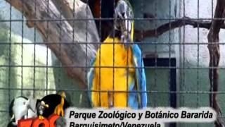 Parque Zoológico y Botánico Bararida. Barquisimeto. Venezuela