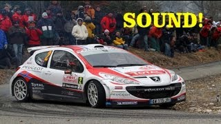 Peugeot 207 S2000 Evo - Pure Sounds