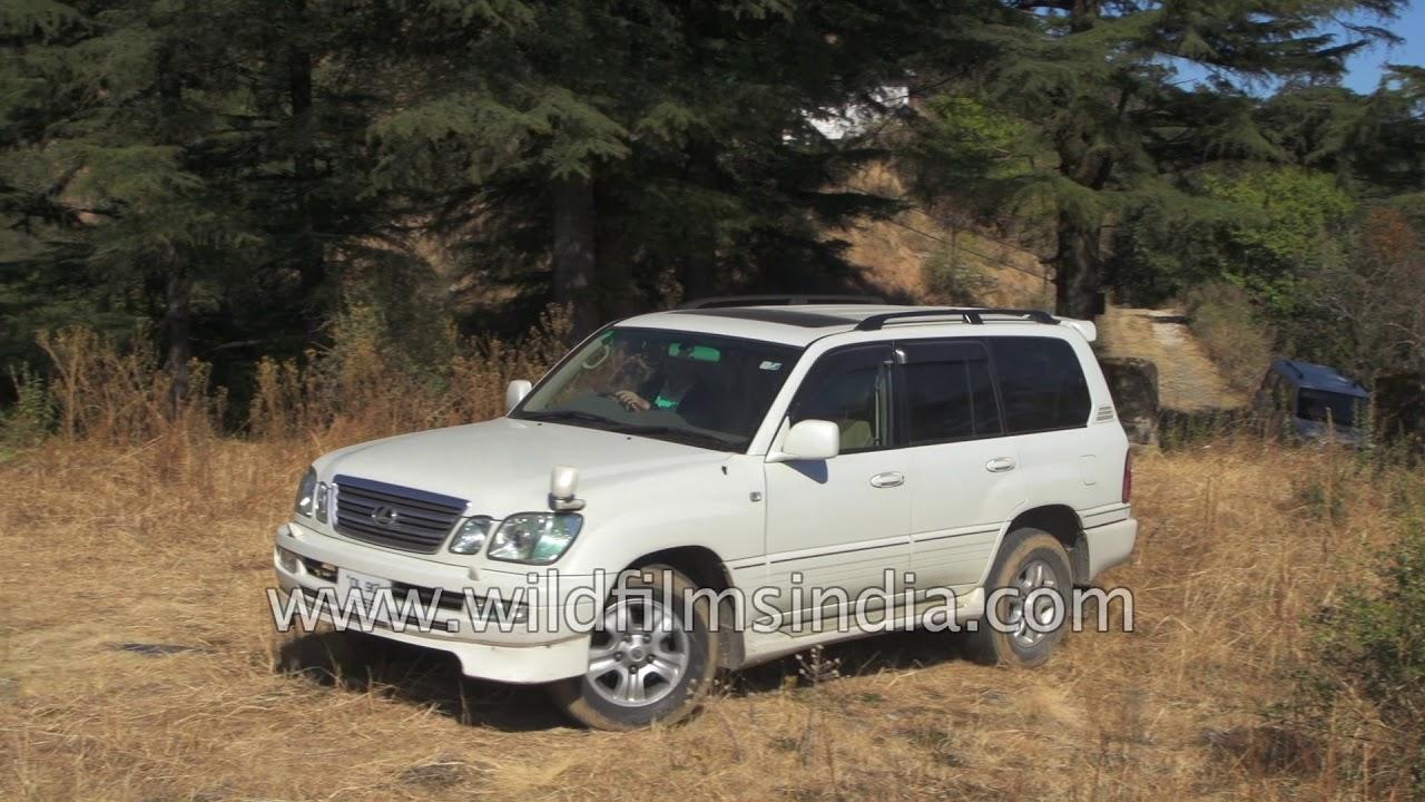 Lexus LX470 Toyota Land Cruiser platform SUV for sale in India - YouTube
