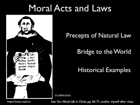 10-Natural Law Inclinations, Precepts and Examples