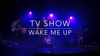 Tv Show does Avicii-Wake me Up Cover