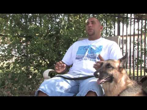 Dog Training & Care : How Do I Prevent My Dog From Jumping the Fence?