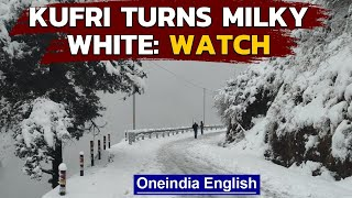 Kufri gets covered in a blanket of snow, snow lovers take delight: Watch the video | Oneindia News