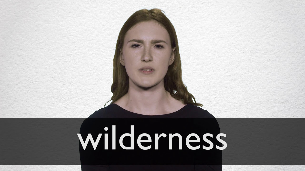 How to pronounce WILDERNESS in British English