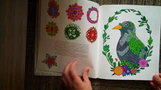 Обзор на раскраску Айви и чернильная бабочка