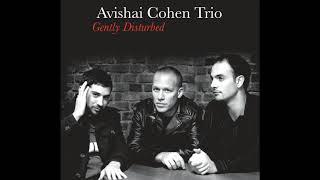 Video Avishai Cohen - The Ever Evolving Etude download MP3, 3GP, MP4, WEBM, AVI, FLV April 2018