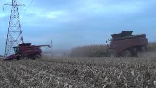 versatile rt490 and case ih 7120 combines harvesting corn near mishawaka indiana