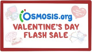 Feb 14. Valentine's Day Flash Sale!