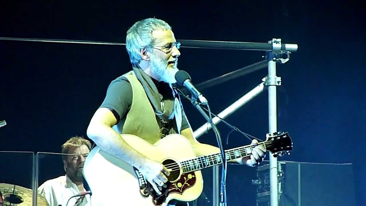 Forever young cat stevens-7487