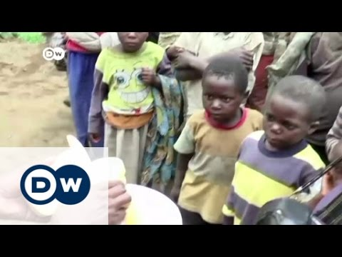 Congo: Making cheese in a war zone | Africa on the Move