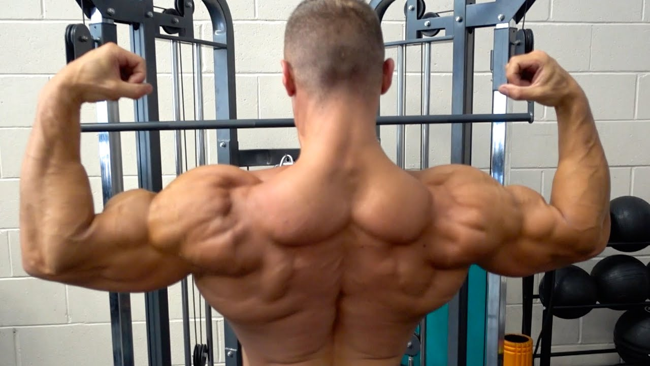 German Volume Training - Back