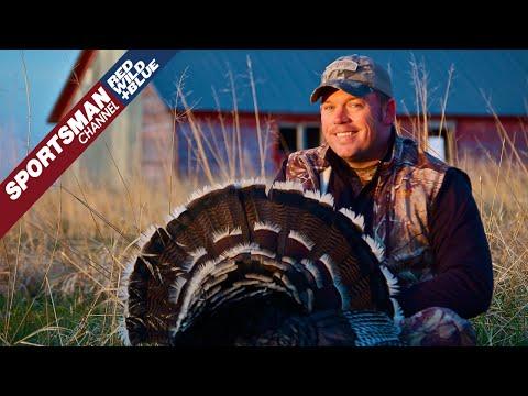 Turkey Hunting Late Season Strategies - Spring Chronicles