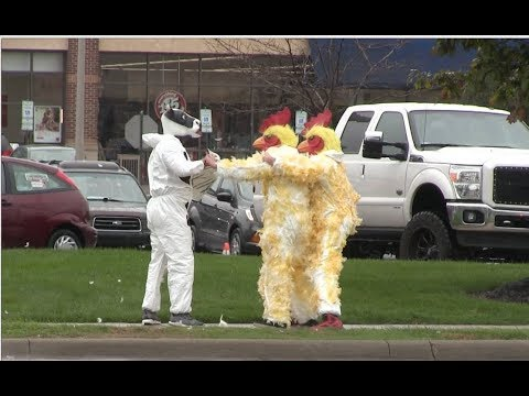 Heather Maack - Chickens Fight BACK!