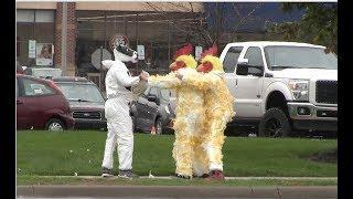 Chickens vs. Cows- CHIC FIL-A BRAWL