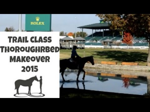 Trail Class at Kentucky Horse Park 2015 for the Thoroughbred Makeover