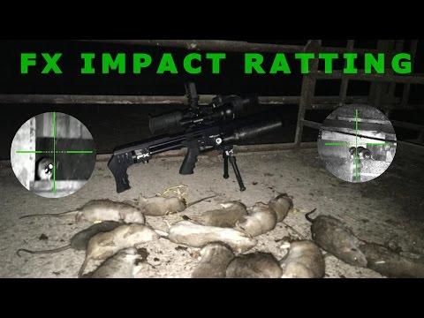Rat shooting Air rifle pest control - FX impact NV ratting