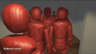 Crowd Dynamics And Emergency Escape In Immersive Virtual Environments