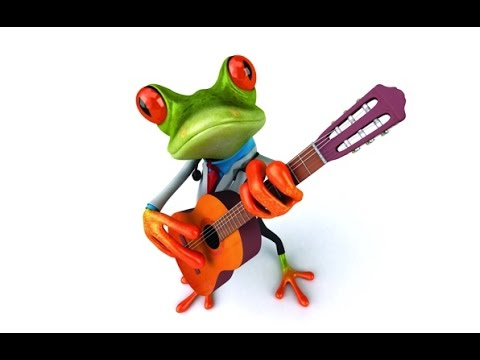 video gracioso Ranas (Frogs) ***HD*** - YouTube