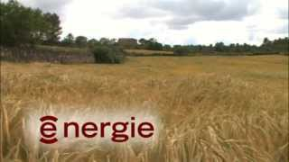 Engrais Bio