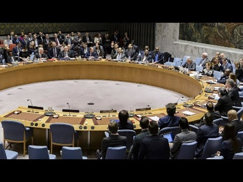 UN Security Council Debates the Future of Venezuela