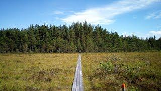 Wandern in Schweden Järnleden Värmland