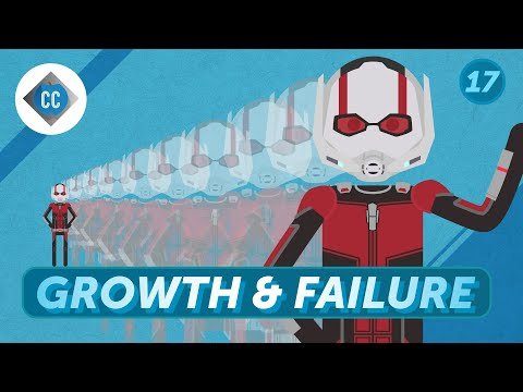 Is Growth Right For You: Crash Course Entrepreneurship #17