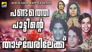 പണ്ടത്തെ പാട്ടിൻറെ താഴ് വേരിലേക്ക്   Old Is Gold Mappila Songs   Pazhaya Mappila Pattukal
