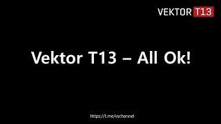 Vektor T13 - All Ok! (English guide)
