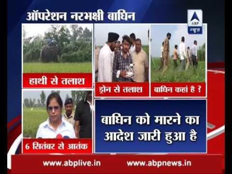 Uttarakhand: Search operation for man-eating tigress on