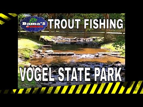 TROUT FISHING AT VOGEL STATE PARK|TIPS AND TECHNIQUES| NORTH GEORGIA