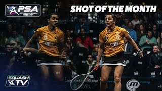 Squash: Women's Shot of the Month - March 2020