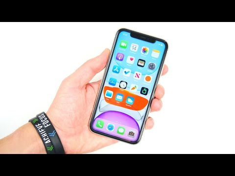 IPhone 11 - 6 Months Later!