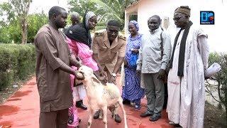 Lancement de la campagne de vaccination du bétail 2018-2019:Thiès se fixe un objectif de plus de 90%