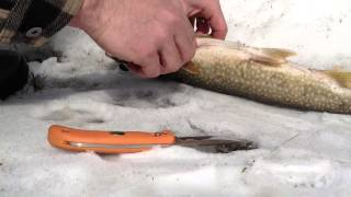 Vr Big Land Trapper-lake Trout Over Camp Fire