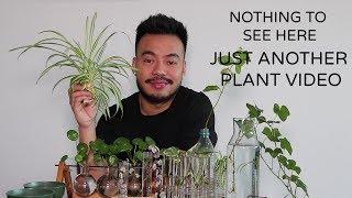 Plant Propagation (Literature Subject)