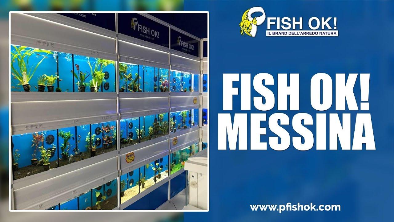 Pesci tropicali marini acqua dolce vendita acquari for Vendita on line pesci tropicali
