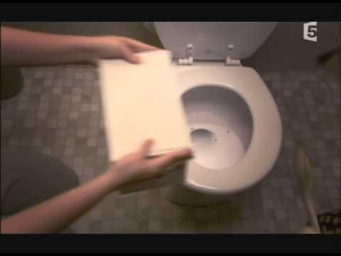 derasect. le rat dans la cuvette des wc !! www.derasect - youtube