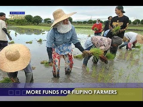 More Funds For Filipino Farmers   BizWatch